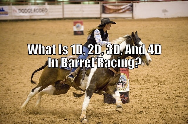 1D 2D 3D 4D barrel racing